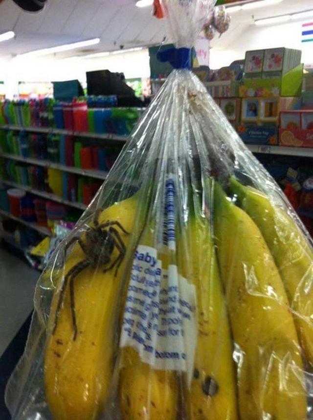 CUIDADO! Olhe antes de comer uma banana, você pode se arrepender!