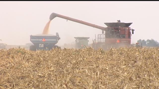 KETELSEN REPORT: Farmers Racing The Clock To Wrap Up Harvest