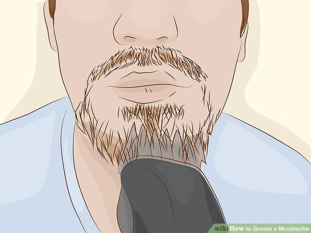 wikiHow to Groom a Moustache_国际_蛋蛋赞
