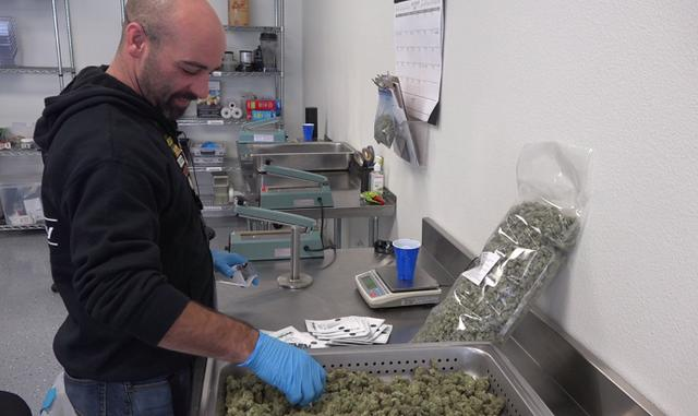'Green' Friday: marijuana dispensaries offer cannabis deals for the first time