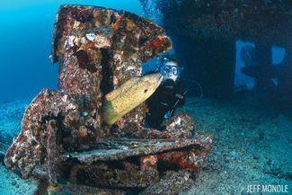 Scuba Diving The Wrecks Of Oahu