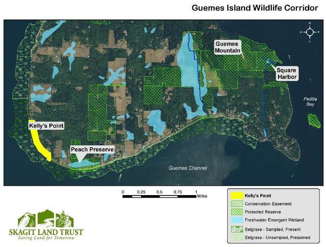 Effort underway to conserve Guemes Island's Kelly's Point