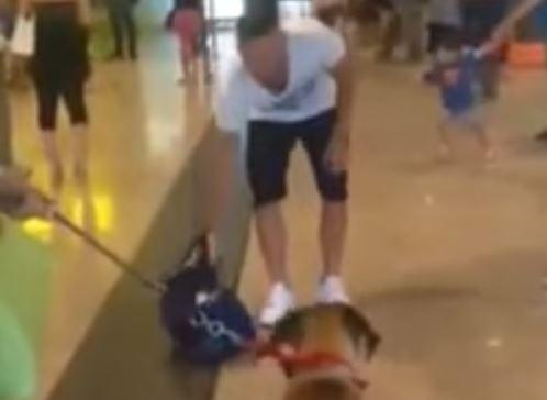 Dog has emotional reunion when he sees owner for first time in months
