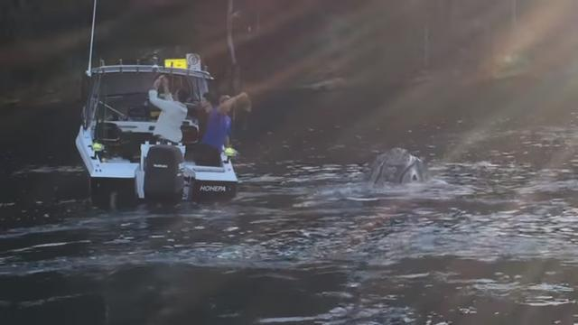 Terrifying Creature Approaches Fisherman – As It Gets Closer, Fear Becomes Heartbreak