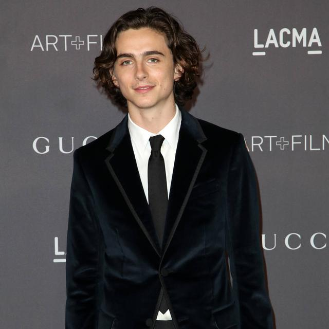 Timothee Chalamet's Hollywood plans for 2018
