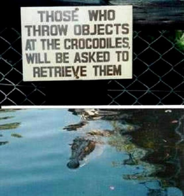 funniest zoo signs ever 国际 蛋蛋赞