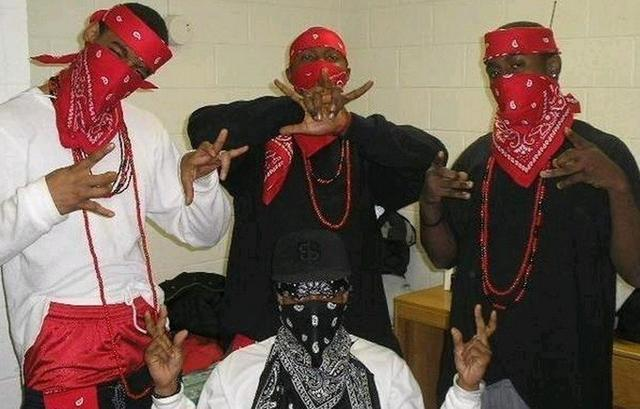 Los Angeles Crips and Bloods gangs: Past and Present_国际_蛋蛋赞