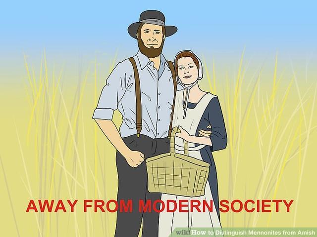 How to Distinguish Mennonites from Amish_国际_蛋蛋赞