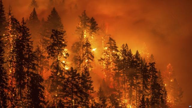 Californian Wildfires are Actually Laser-Made!_国际_蛋蛋赞