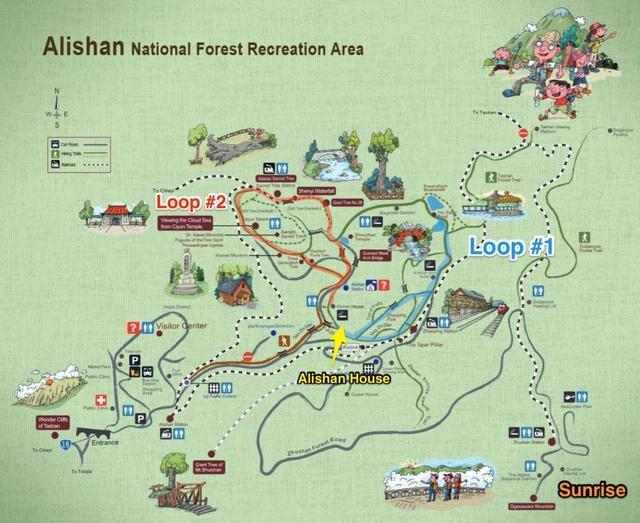 The Ultimate Guide to Alishan National Recreational Forest