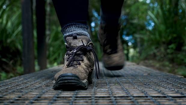 A step forward on Rodney walking paths