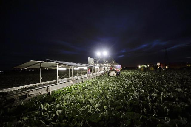 Despite heated rhetoric, little change on US-Mexico border