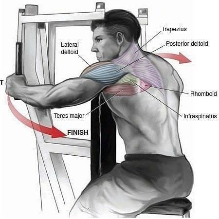 Full Shoulder Workout!_国际_蛋蛋赞