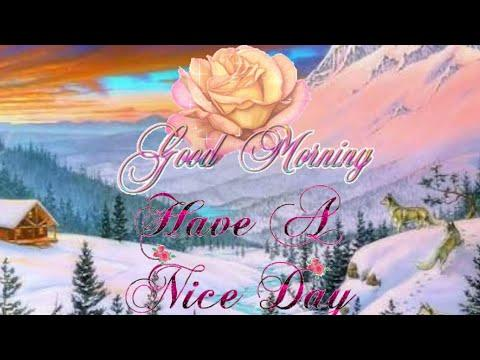 Good Morning Have A Lovely Day Wishes Beautiful Whatsapp Video