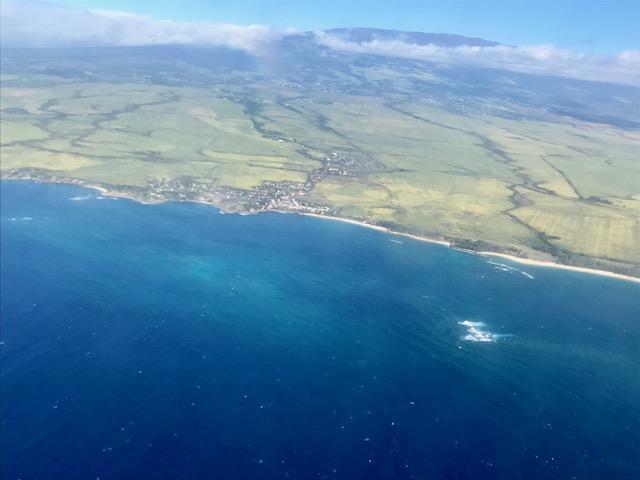 17 Unexpected Experiences on Maui, Hawaii_国际_蛋蛋赞