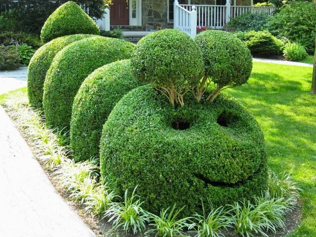 topiary gardens amazing sculptures from living shrubs and plants