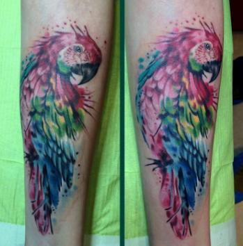 Parrot Tattoo: Meaning, Photos and the Best Sketches_国际_蛋蛋赞