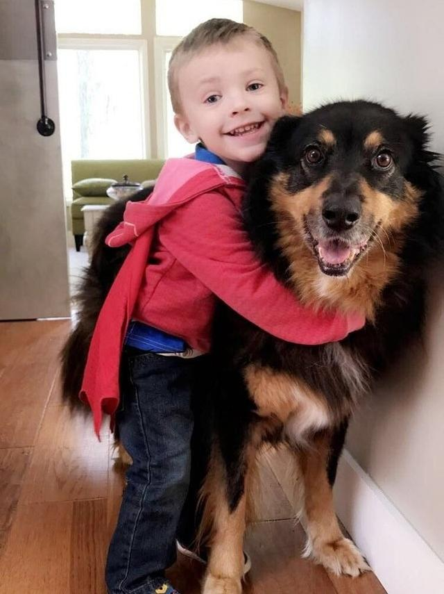 23 Photos That Show Why Every Child Should Have a Pet (New Pics)