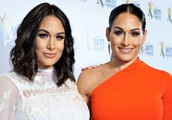 The Bella Twins Hype WWE Super Show-Down, Goldust Takes Pride in the Rhodes Family