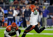 In a League of Inconsistent Kickers, Bengals' Randy Bullock is Anything but