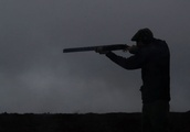 Grouse shooting season off to misty start in Scotland