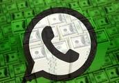 Wish, Netflix, Uber and ~100 others testing WhatsApp's new Business API