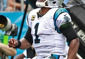 Newton, defense lead Panthers past Cowboys 16-8