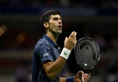 Djokovic criticises Serena Williams umpire for 'unnecessary' actions but dismisses sexism