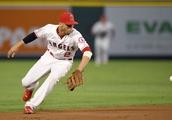 Mariners Angles Baseball