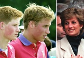 How Princess Diana Spent Saturday Nights With Prince Harry & Prince William Will Make You Love H