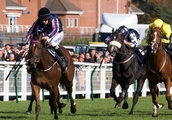 Who won the Ayr Gold Cup? All the winners revealed