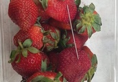NZ supermarket chain halts Australian strawberry sales as needles found
