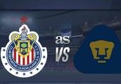 Chivas vs Pumas en vivo online: Liga MX, jornada 12