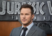 Actor Chris Pratt had prime seats for UFC 229 but didn't enjoy the melee