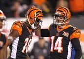 NFL FantasyDraft Week 6 Optimal lineup