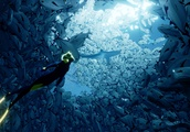 Underwater adventure game 'Abzû' is coming to the Nintendo Switch