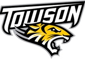 Flacco Leads Towson Over William & Mary 29-13