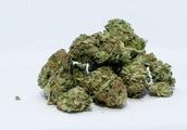 Spending on illicit drugs in US nears $150 billion annually