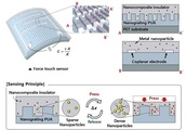 High-performance, flexible, transparent force touch sensor for wearable devices
