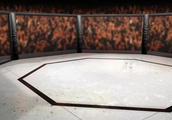 Why Is the UFC Cage an Octagon? Its Origin Story Is More Fascinating Than You'd Think and Involves S