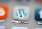 WordPress plugs bug that led to Google indexing some user passwords