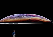 iPhone Xr: Apple's new, cheaper and colourful handset opens for pre-orders