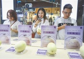 AI used to identify sweetness of melons at a store in Hainan