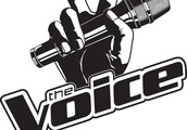 'The Voice' Slammed for Airing 'Insulting' Call Between DeAndre Nico and Reagan Strange