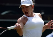 Simona Halep's coach stands down due to family reasons