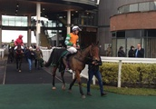 Grand National winner dreaming of more with Abolitionist after Aintree victory
