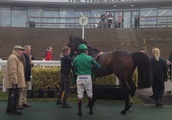 Wholestone is 'best of British' after winning the British Thoroughbred Retraining Centre Hurdle at