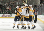 Nashville Predators: Watching a game from the kitchen is hard, but it worked