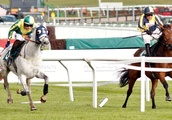 Cheltenham installs rail to prevent repeat of horses running wrong way