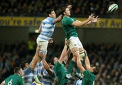 Irish are a car in need of fine-tuning, says Schmidt